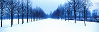 """Winter in Schleissheim Bavaria Germany by Panoramic Images - 28"""" x 9"""""""