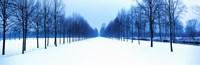 Winter in Schleissheim Bavaria Germany