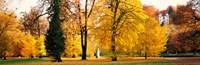 Hellbrunn Park Salsburg Vicinity Austria