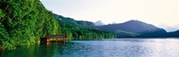 "Alp Lake Hohenschwangau Germany by Panoramic Images - 28"" x 9"""