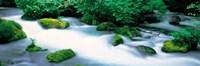 "Fog in Oirase ravine Aomori Towadako-cho Japan by Panoramic Images - 27"" x 9"", FulcrumGallery.com brand"