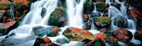 """Kibune River fall colors Kyoto Sagano Japan by Panoramic Images - 28"""" x 9"""""""