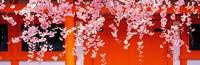 "Heian-Jingu Kyoto Japan by Panoramic Images - 28"" x 9"", FulcrumGallery.com brand"