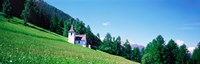 Green Slopes Engadin Switzerland