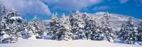 "Winter in Chino Nagano Japan by Panoramic Images - 27"" x 9"""