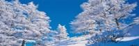 """Utsukushigahara Nagano Japan by Panoramic Images - 27"""" x 9"""""""