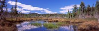 """Reflection of clouds in water, Raquette Lake, Adirondack Mountains, New York State, USA by Panoramic Images - 28"""" x 9"""""""
