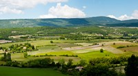 "High angle view of a field, Sault, Vaucluse, Provence-Alpes-Cote d'Azur, France by Panoramic Images - 16"" x 9"""