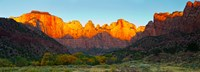 """Towers of the Virgin and the West Temple in Zion National Park, Springdale, Utah, USA by Panoramic Images - 25"""" x 9"""""""