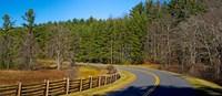 Road passing through a forest, Blue Ridge Parkway, North Carolina, USA Fine Art Print