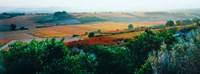 "Autumn Colors, Provence-Alpes-Cote d'Azur, France by Panoramic Images - 24"" x 9"""