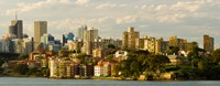 Buildings at the waterfront, Sydney Harbor, Sydney, New South Wales, Australia Fine Art Print
