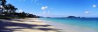 Palm trees on the beach, Lanikai Beach, Oahu, Hawaii, USA Framed Print