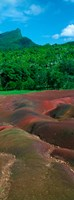 """Rock formations, Mauritius by Panoramic Images - 9"""" x 24"""", FulcrumGallery.com brand"""
