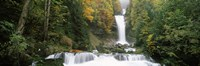 """Giessbach Falls on Lake Brienz, Bernese Oberland, Berne Canton, Switzerland by Panoramic Images - 27"""" x 9"""", FulcrumGallery.com brand"""
