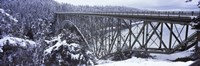 """Bridge leading to a forest, Deception Pass Bridge, Deception Pass State Park, Washington State, USA by Panoramic Images - 28"""" x 9"""""""