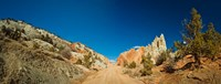 "Cottonwood Canyon Road passing through Grand Staircase-Escalante National Monument, Utah, USA by Panoramic Images - 24"" x 9"""
