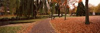 """Park at banks of the Avon River, Christchurch, South Island, New Zealand by Panoramic Images - 27"""" x 9"""""""