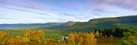 """Autumn trees at Loch an Eilein, Rothiemurchus Forest, Aviemore, Cairngorms National Park, Highlands Region, Scotland by Panoramic Images - 27"""" x 9"""", FulcrumGallery.com brand"""