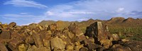 """Signal Hill with Petroglyphs, Saguaro National Park, Tucson, Arizona, USA by Panoramic Images - 25"""" x 9"""", FulcrumGallery.com brand"""
