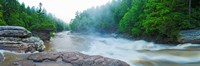 """Youghiogheny River, Swallow Falls State Park, Garrett County, Maryland by Panoramic Images - 27"""" x 9"""""""