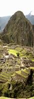 High angle view of an archaeological site, Machu Picchu, Cusco Region, Peru Fine Art Print