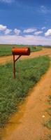 "Red mailbox at the roadside, San Rafael Valley, Arizona, USA by Panoramic Images - 9"" x 25"""