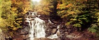 """Kaaterskill Falls, Catskill Mountains, New York State by Panoramic Images - 22"""" x 9"""""""
