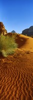 Sand dunes in a desert, Jordan (vertical) Fine Art Print