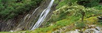 "High angle view of the Aber Falls, Abergwyngregyn, Gwynedd, Wales by Panoramic Images - 28"" x 9"""