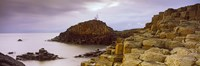 "Rock formations at the coast, Giant's Causeway, Bushmills, County Antrim, Northern Ireland by Panoramic Images - 28"" x 9"""
