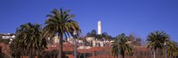 Palm trees with Coit Tower in background, San Francisco, California, USA Fine Art Print
