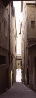 """Narrow alley with old buildings, Siena, Siena Province, Tuscany, Italy by Panoramic Images - 9"""" x 24"""""""