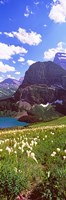 "Beargrass with Grinnell Lake in the background, US Glacier National Park, Montana by Panoramic Images - 9"" x 27"""