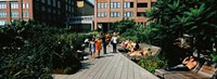 """Tourists in an elevated park, High Line, New York City, New York State by Panoramic Images - 25"""" x 9"""""""