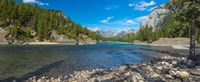 """River passing through a forest, Bow River, Banff National Park, Alberta, Canada by Panoramic Images - 22"""" x 9"""""""