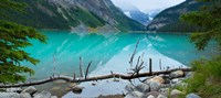 "Reflections in Lake Louise, Banff National Park, Alberta, Canada by Panoramic Images - 20"" x 9"""