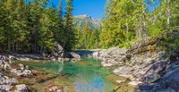"""McDonald Creek along Going-to-the-Sun Road at US Glacier National Park, Montana, USA by Panoramic Images - 18"""" x 9"""""""