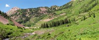 """Wilderness area and Snake River, Crested Butte, Colorado, USA by Panoramic Images - 22"""" x 9"""" - $28.99"""