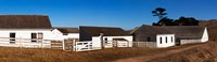 """Dairy buildings at Historic Pierce Point Ranch, Point Reyes National Seashore, Marin County, California, USA by Panoramic Images - 31"""" x 9"""""""