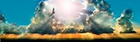 """Eagle flying in the sky with clouds at sunset by Panoramic Images - 30"""" x 9"""""""