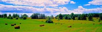 """Hay bales in a landscape, Michigan, USA by Panoramic Images - 28"""" x 9"""", FulcrumGallery.com brand"""