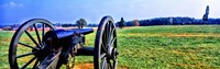 """Cannon at Manassas National Battlefield Park, Manassas, Prince William County, Virginia, USA by Panoramic Images - 29"""" x 9"""""""