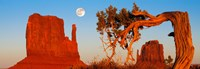 "Rock formations, Monument Valley Tribal Park, Utah Navajo, San Juan County, Utah, USA by Panoramic Images - 26"" x 9"""
