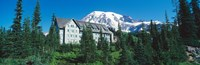 """Lodge on a hill, Paradise Lodge, Mt Rainier National Park, Washington State, USA by Panoramic Images - 28"""" x 9"""""""