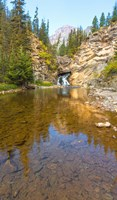 """Flowing stream in a forest, Banff National Park, Alberta, Canada by Panoramic Images - 9"""" x 15"""", FulcrumGallery.com brand"""