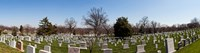 "Tombstones in a cemetery, Arlington National Cemetery, Arlington, Virginia, USA by Panoramic Images - 34"" x 9"""