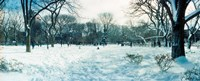 """Snow covered park, Lower East Side, Manhattan, New York City, New York State, USA by Panoramic Images - 22"""" x 9"""""""