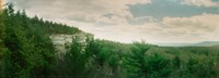 """Trees along the Gertrude's Nose, Minnewaska State Park, Catskill Mountains, New York State, USA by Panoramic Images - 25"""" x 9"""" - $28.99"""