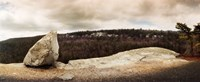 """Boulders with trees in the background, Gertrude's Nose, Minnewaska State Park, Catskill Mountains, New York State, USA by Panoramic Images - 22"""" x 9"""""""